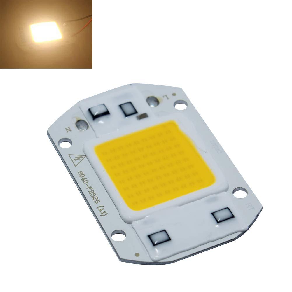 Rokoo 30/W 220 V LED COB Light DIY illuminazione ad alta potenza lampada a risparmio energetico chip 1lk3gu6et6wm5ta8D03