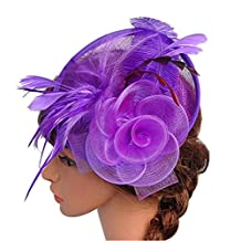 Womens Feather Mesh Net Fascinator Hat with Hair Clip Cocktail Wedding Headwear