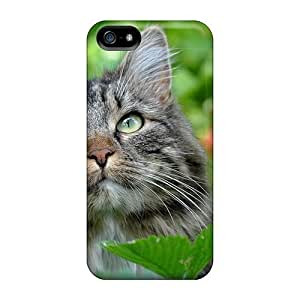 Dana Lindsey Mendez Premium Protective Hard Case For Iphone 5/5s- Nice Design - Cat In The Nature