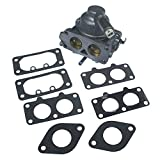 KIPA Carburetor Carb Replacement for Briggs & Stratton 791230 799230 699709 499804 with Mounting Gaskets