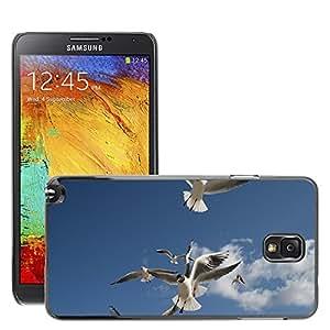 Etui Housse Coque de Protection Cover Rigide pour // M00109388 Seagull Beach se nubla el cielo azul de // Samsung Galaxy Note 3 III N9000 N9002 N9005