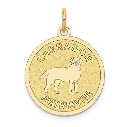 (Mia Diamonds 14K Yellow Gold Labrador Retriever Disc Charm (26mm x 20mm))