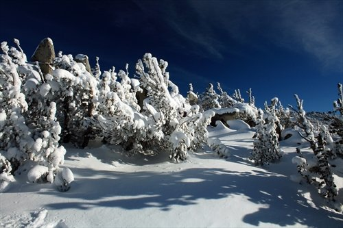 Skyline Trail, Heavenly, South Lake Tahoe, Nevada - Framed Photo Art Print, - Tahoe Lake Heavenly South