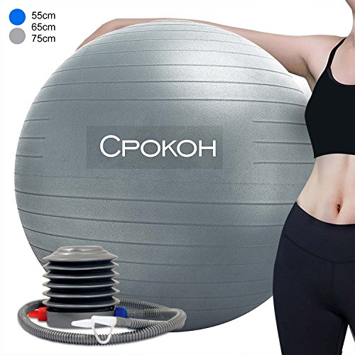 CPOKOH Exercise Ball,Anti Burst and Slip Resistant Yoga Ball,Swiss Ball,Fitness Ball,Ab Exercise Ball,Gym Ball,Workout ball,Body Balance Ball, with Foot Pump(Silver,55cm)