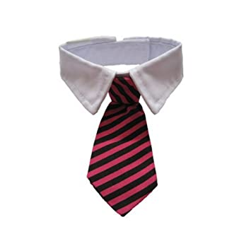 GOGO pequeño animal doméstico raya pajarita, caballero corbata ...