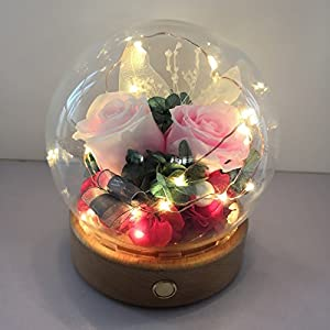 FYYDNZA Tanabata Immortal Flower Glass Cover Gift Box Red Rose Girlfriend Lover Birthday Gift Fresh Flower,Pink Recollection With Light D13X14 91