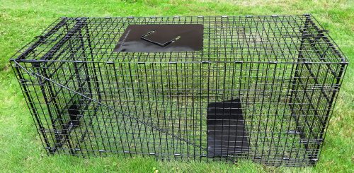 "Humane Way 914985 Live Animal Trap, X-Large 42""x18""x16"""