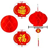 Resinta 20 Pieces Red Chinese Lanterns Decorations for Chinese New Year, Spring Festival, Lantern Festival Celebration Supplies or Décor (12 inch)
