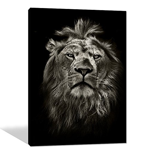 Global Artwork Printed Posters and Prints Black White Animal