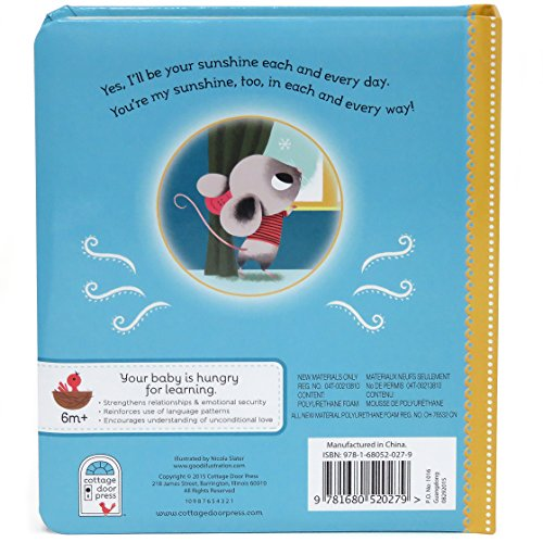 Buy new mouse's first snow classic board books