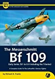 exterior color schemes The Messerschmitt Bf 109 Early Series (V1 to E-9 Including T-series): A Complete Guide to the Luftwaffe's Famous Fighter (Airframe & Miniature)