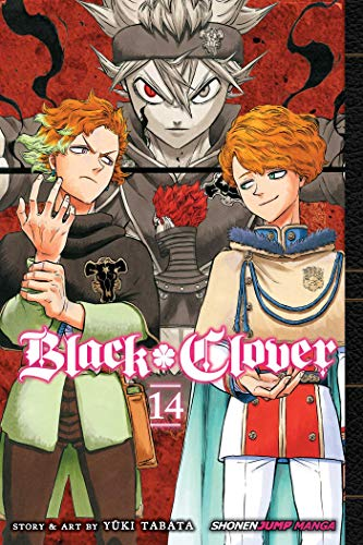 Pdf Teen Black Clover, Vol. 14