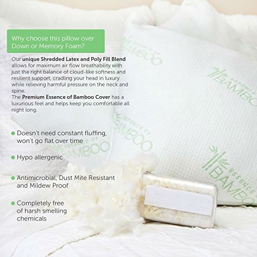 essence of bamboo derived rayon pillow with shredded latex