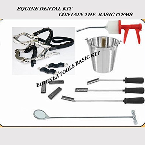 Equine Dental Kit Set Speculum Horse With Basic items floats, syringe, mirror