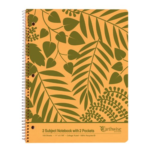 Ampad 2 Subject Notebook, 2 Pockets, College Ruled, 100 Sheets, Assorted Colors (25-481)