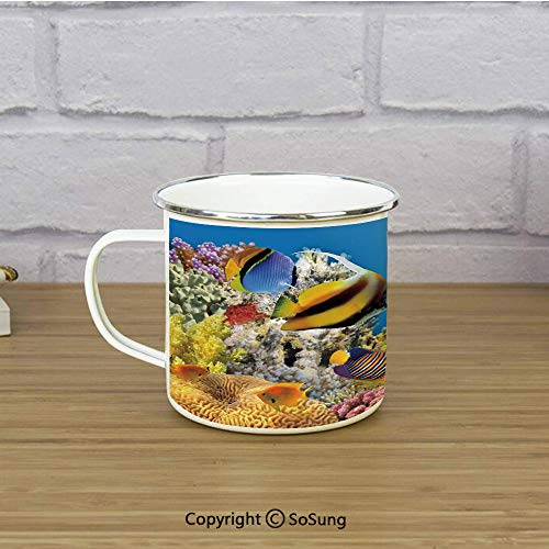 Ocean Enamel Coffee Mug,Coral Colony on a Reef Top in Red Sea Egypt Exotic Fishes Aquatic Underwater Life,11 oz Practical Cup for Kitchen, Campfire, Home, TravelMulticolor