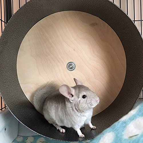 15'' Chin Spin - Chinchilla Wheel - Handmade in USA by Quality Cage Crafters
