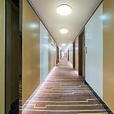 Airand Ceiling Light LED 3000K Flush Mount 18W