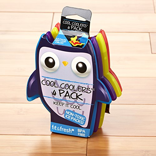 Fit & Fresh Cool Coolers Lunch Ice Packs, Set of 4, Multicolored, Owls