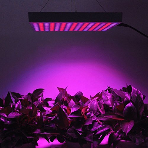 51Qjg0AUI8L - 45W LED Grow Light, UNIFUN New Light Plant Bulbs Plant Growing Bulb for Hydroponic Aquatic Indoor Plants