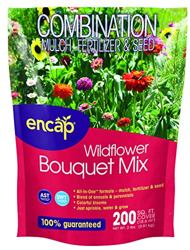 (Wildflower Bouquet Mix from Encap - 4-in-1 Mix, Annual and Perennial Seeds - Open-Pollinated, Non-GMO, with Instructions for Planting a Beautiful)