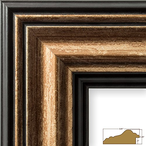 Copper Photo Frame (Craig Frames 21307201 11 by 14-Inch Picture Frame, Smooth Wrap Finish, 3.015-Inch Wide, Copper and Black)