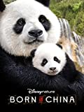 DVD : Disneynature: Born in China (Theatrical Version)