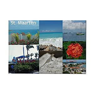 """CafePress - St. Maarten Collage by Khonce Rectangle Magnet - Rectangle Magnet, 2""""x3"""" Refrigerator Magnet"""