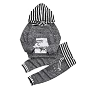 Toddler Infant Baby Boys Dinosaur Long Sleeve Hoodie Tops Sweatsuit Pants Outfit Set (0-6 Months, 2-day Shipping)