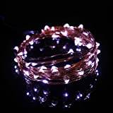 Naladoo USB Plug In LED Fairy Lights,50 LED Bulbs 16 Ft Silver Wire Waterproof Starry String Lights for Bedroom Patio Garden Party Wedding Commercial Lighting (White)
