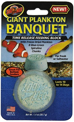 (Zoo Med Laboratories AZMBB6 Plankton Banquet Block Feeder Giant, 2 Count)