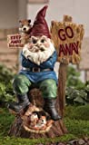 Keep Away From My Nuts! Garden Gnome Figurine