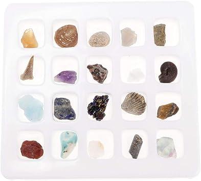 Sharplace 20pcs Muestras de Minerales y Rocas con Caja de Almacenamiento Herramienta de Enseñanza Escolar: Amazon.es: Juguetes y juegos