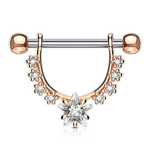 Dynamique Star CZ Center with Lined Prong Set CZs Dangle 316L Surgical Steel Nipple Ring -