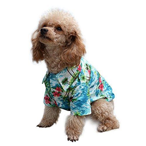 EXPAWLORER Hawaiian Pet Dog