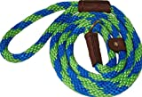 Lone Wolf Slip Lead with Leash and Collar for Pets, 1/2 by 6-Feet, Surfside Lime Green/Pacific Blue Spiral, My Pet Supplies