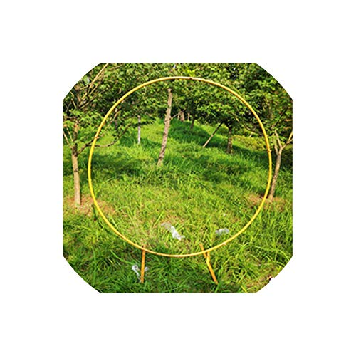 Tokyo Cold Circle Wedding Props Birthday Decor Wrought Iron Round Ring Arch Backdrop Round Arch Lawn Artificial Flower Row Stand Wall Shelf,Diameter 200Cm,Gold A