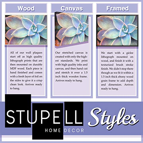 The Stupell Home Decor Collection Life is Like a Camera Inspirational Art Wall Plaque