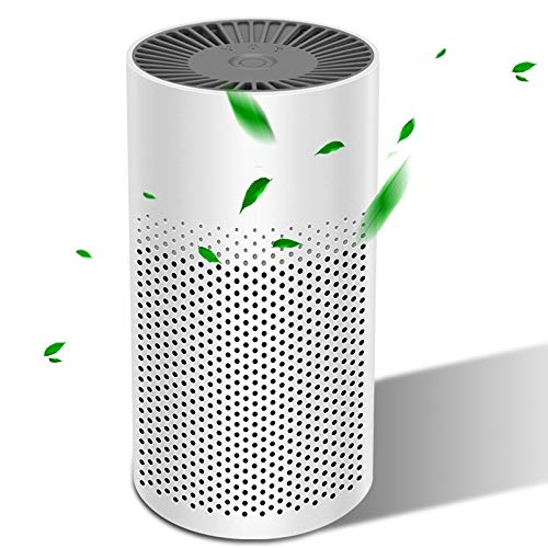 YUEMIDAMY Air Purifier for Home Bedroom Office Desktop Car Baby Room Pet Room with True HEPA Filter Portable Mini USB Air Cleaner
