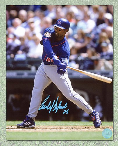 66f44f087 Carlos Delgado Toronto Blue Jays Autographed Blue Jersey Batting 8x10 Photo  - Signed MLB Pictures