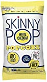 Skinny Pop Popcorn 100 Calorie Bag Variety Pack of 20