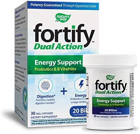 Probiotics: Fortify Energy Support