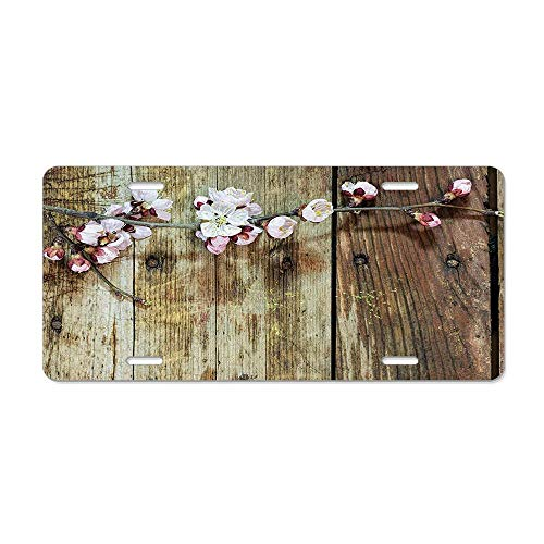 (RAEDGEC Rustic Stained Walnut Branch Soft Twiggy Swirling Flower Leaves Concept Pink Brown Customized License Plate Cover Aluminum Metal Car Licenses Plate Frame Holder for US Vehicles )
