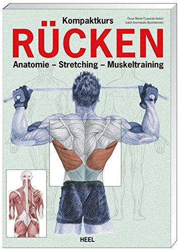 Kompaktkurs Rücken: Anatomie - Stretching - Muskeltraining