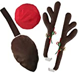Automotive : KOVOT Reindeer Car Set: Includes Car Jingle Bell Antlers Antlers, Nose, and Tail For The Trunk