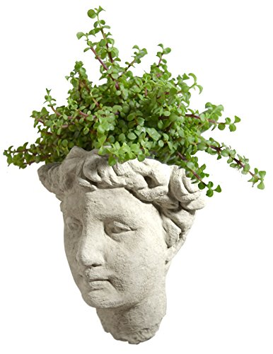 Old Planter Stone - Modern Artisans Vintage Goddess Garden Bust Wall-Mounted Head Planter, 12-Inch Cast Stone, Classic Natural Color