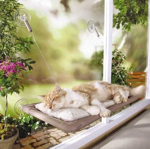 PETPAWJOY Cama para gatos, percha para ventana de gato Asiento de ventana Ventosas Hamaca para gato que ahorra espacio Asiento para descanso de mascotas Estantes para gatos de seguridad - Proporciona un baño de sol de 360 ° para gatos con un peso de hasta 30 lb, bronceado 5