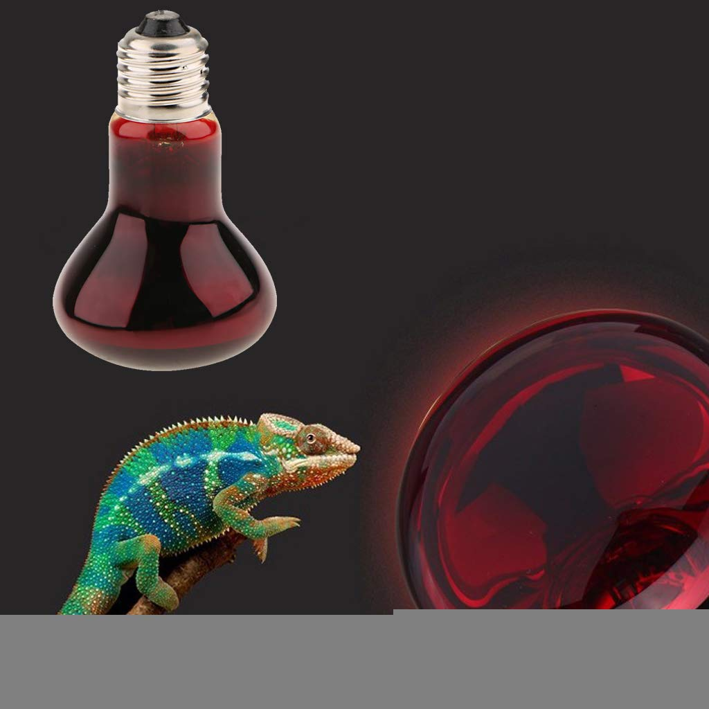 joyMerit 2 x E27 Infrared Heat Lamp Light Bulb Red Lights for Reptile 220V Dog Amphibian Chicken and Other Animal Heating Use Various Types Optional 60W
