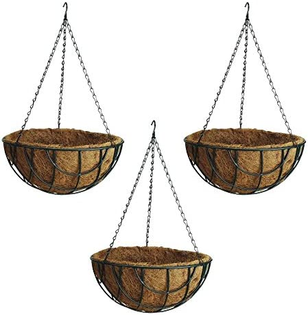Rocky Mountain Hanging Natural Coconut