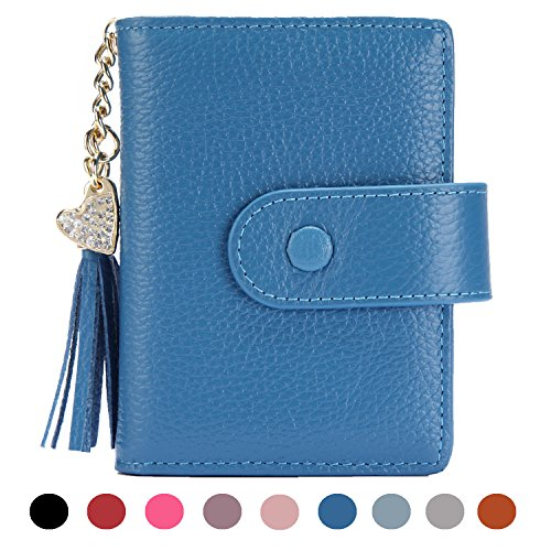 Women's Mini Credit Card Case Wallet with ID Window and Card Holder purse 9 Colors (Heart Credit Holder Card)